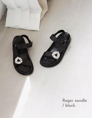Roger sandle